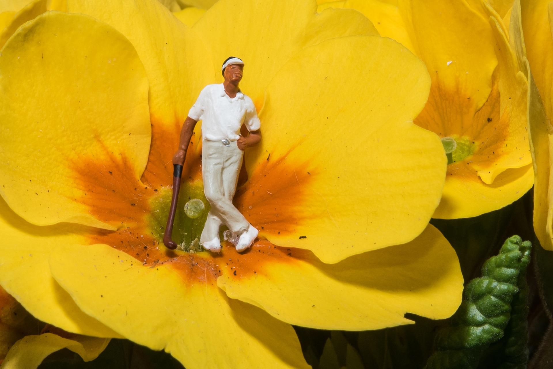 夏のゴルフで注意すること